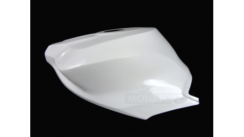 R1 2020 extended fiberglass tank protection
