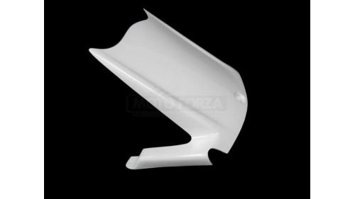 ZX10R 2011-2020 fiberglass rear fender