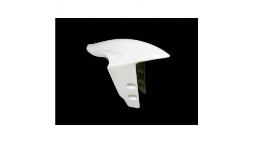 Panigale 899, 959, 1199, 1299 fiberglass front fender